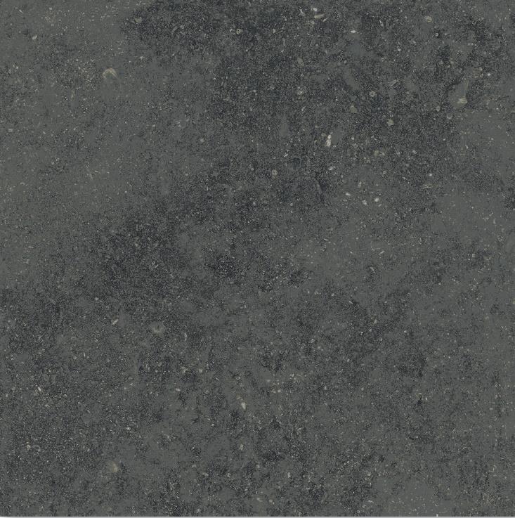 Carbone R11/C